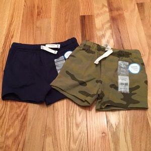 Carters shorts NWT